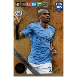 Fernandinho Limited Edition Fifa 365