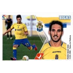 Bigas Las Palmas 8 Ediciones Este 2015-16