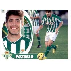 Pozuelo Betis 14 Ediciones Este 2012-13