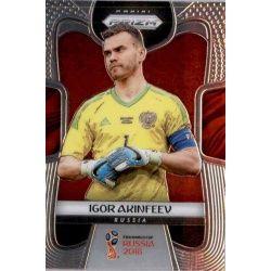 Igor Akinfeev Russia 163