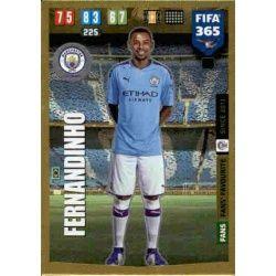 Fernandinho Fans Favourite 48