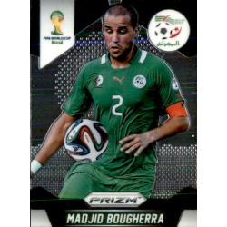 Madjid Bougherra Algeria 2