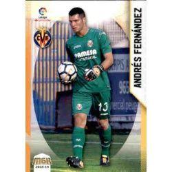 Andrés Fernández Villarreal 516