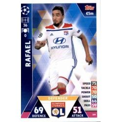 Rafael Olympique Lyonnais 309