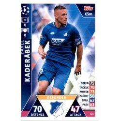 Pavel Kaderábek Hoffenheim 114